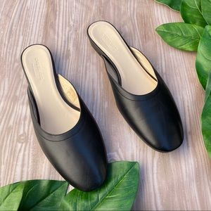 Everlane Black Leather Slip On Mule Flats Shoe 9.5